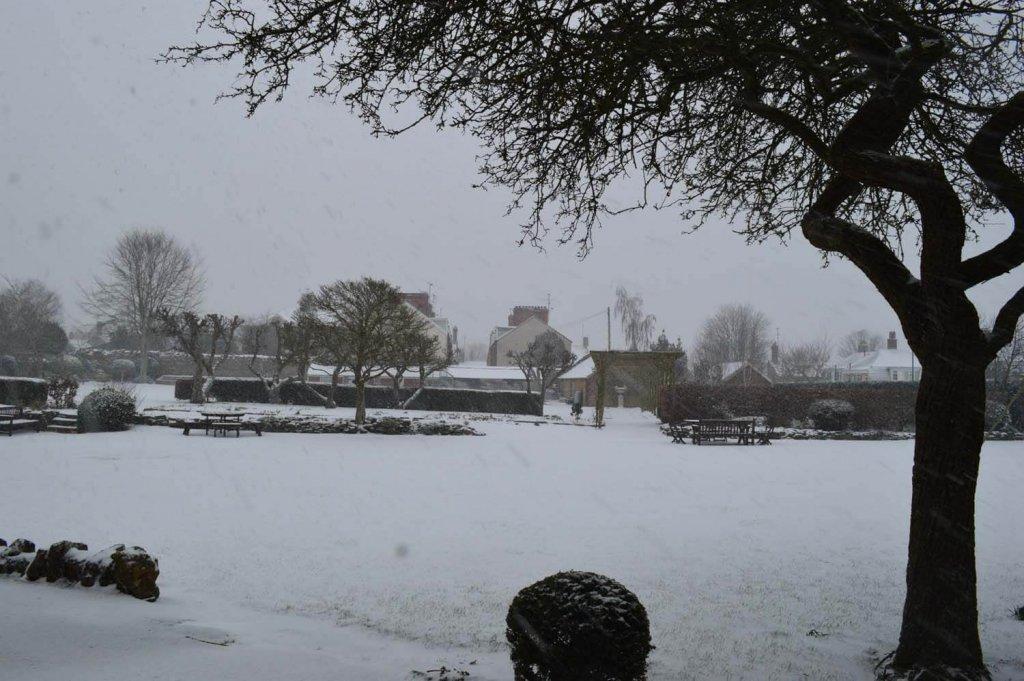 Snow at Westcott Boarding House - Garden (March 2018)