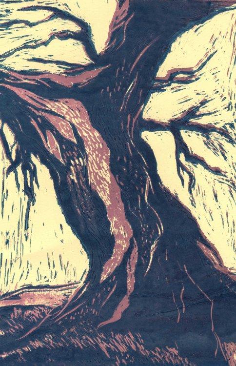 'Oak' - a Linocut by Kate (Year 11)